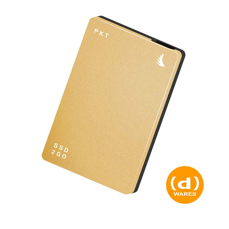 SSD2go PKT 256 GB Gold